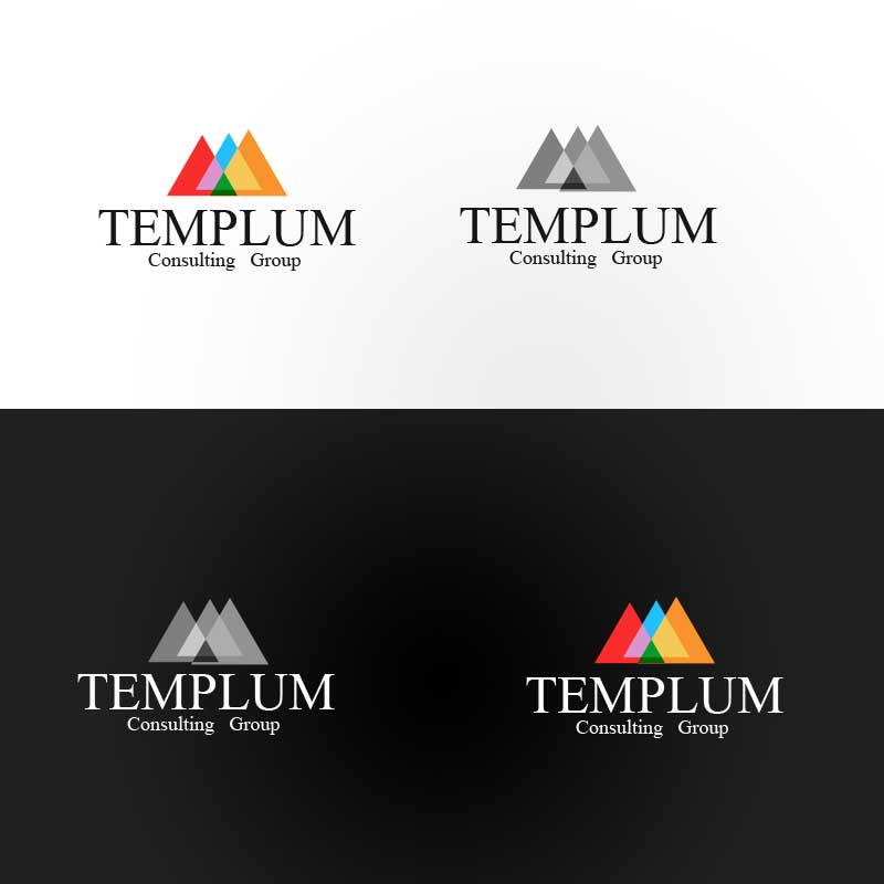 crowdspring consultant logo design by funn