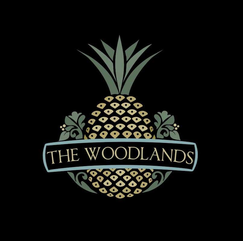custom logo design by janisa